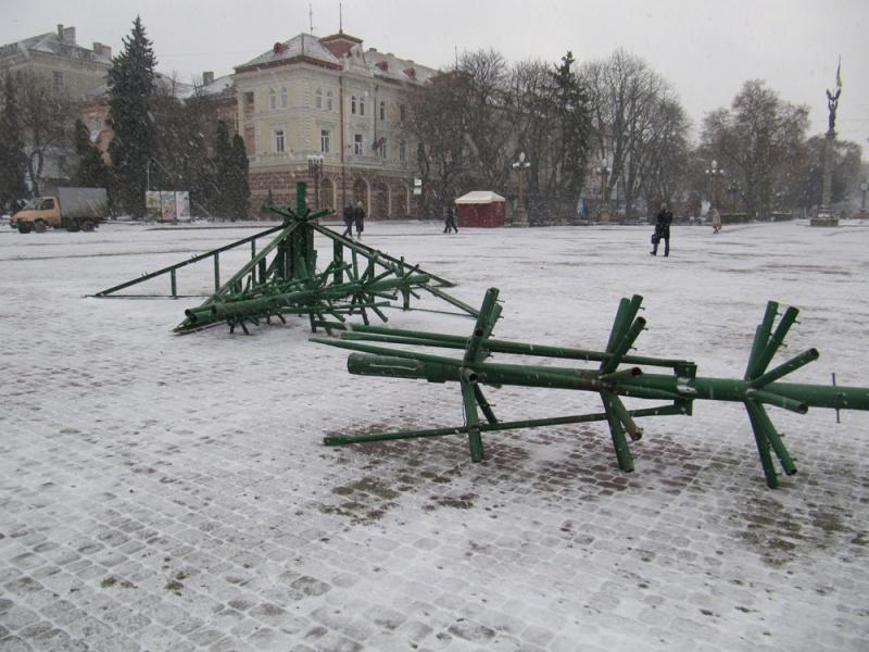 jalynka1